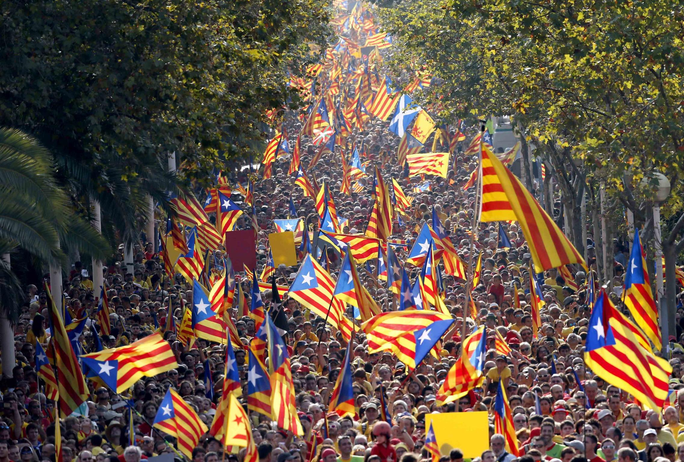 "People hold ""estelada"" flags, Catalan separatist flags, during a gathering to mark the Calatalonia day ""Diada"" in central Barcelona September 11, 2014. Hundreds of thousands of Catalans were expected to throng the streets of Barcelona on Thursday to demand the right to vote on a split from Spain, with their ambitions boosted by an independence referendum scheduled for next week in Scotland. About half a million Catalans have signed up to dress in red and yellow, the colors of the Catalan flag, to form a ""V"" for ""vote"", organizers say, a show of support for the perceived right to decide on a status separate from Spain. REUTERS/Albert Gea (SPAIN - Tags: POLITICS TPX IMAGES OF THE DAY)"